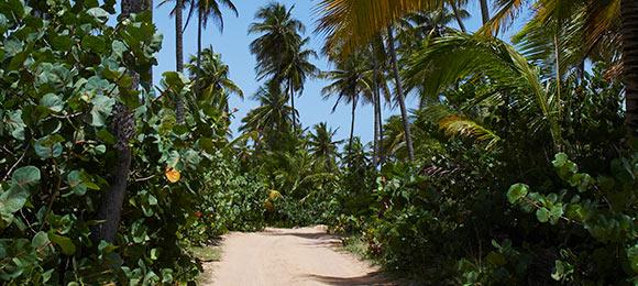 stranden op de caraiben