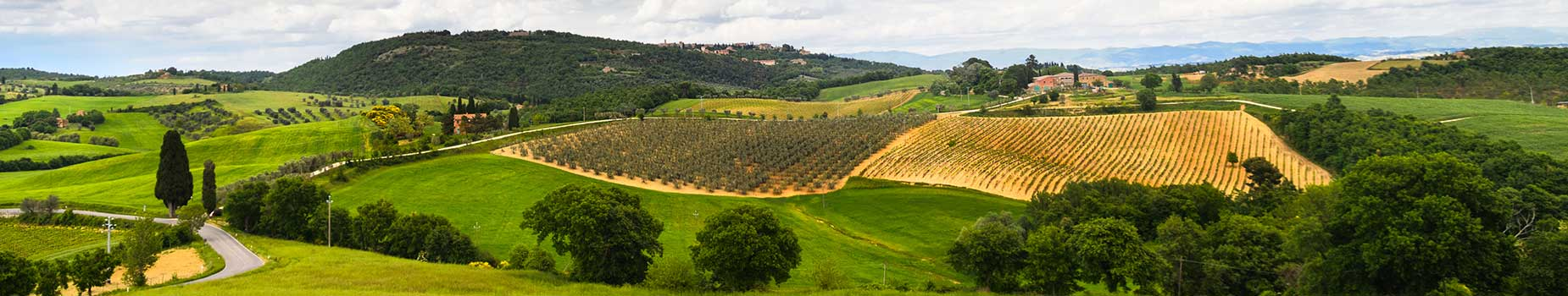 Fly Drive Toscane