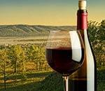fles wijn uitzicht