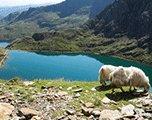 schitterende natuur wales