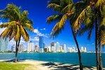 Florida Fantastic - DeJongIntra